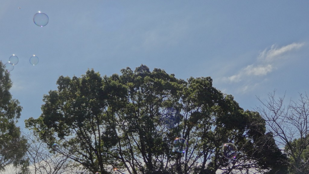 公園でのシャボン玉の風景