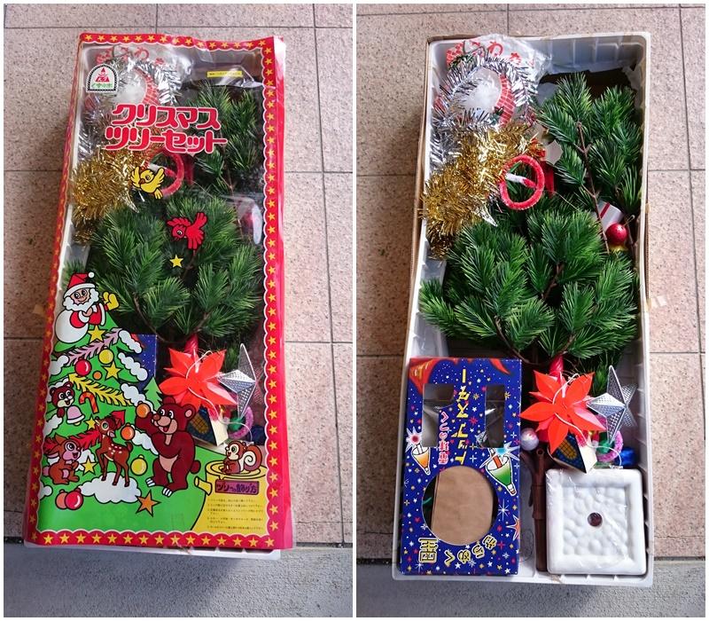クリスマスツリー(くすの木)(2)