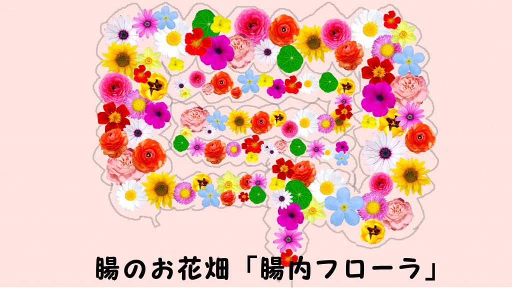 腸内のお花畑「腸内フローラ」
