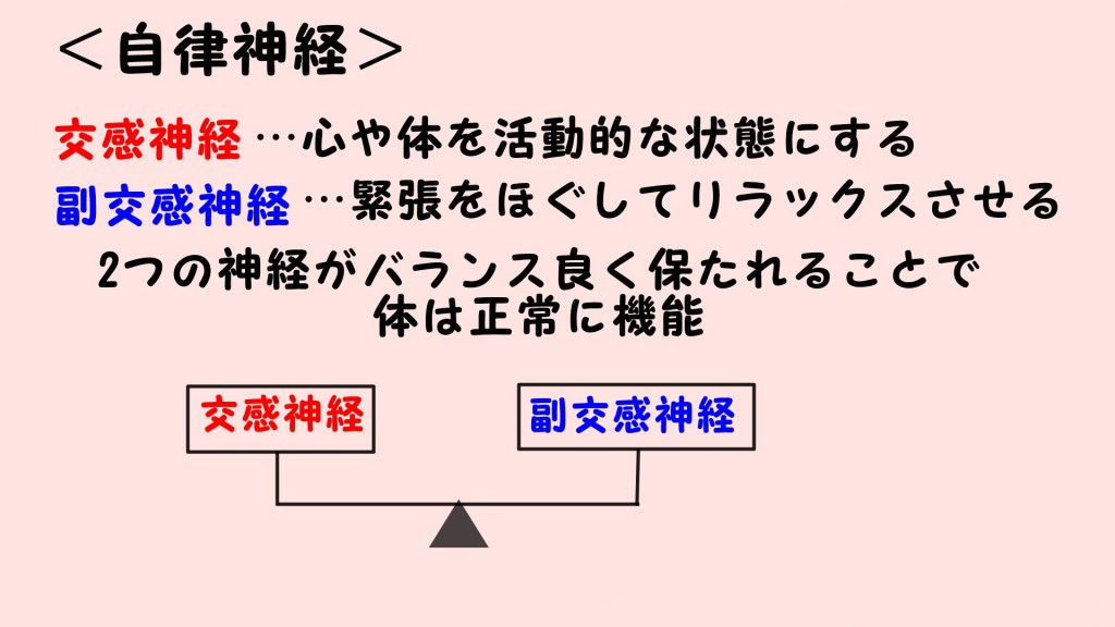 <自律神経について>