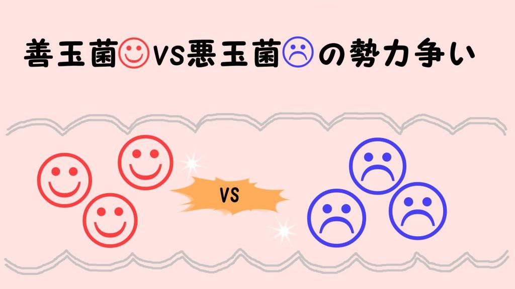 善玉菌vs悪玉菌の勢力争い