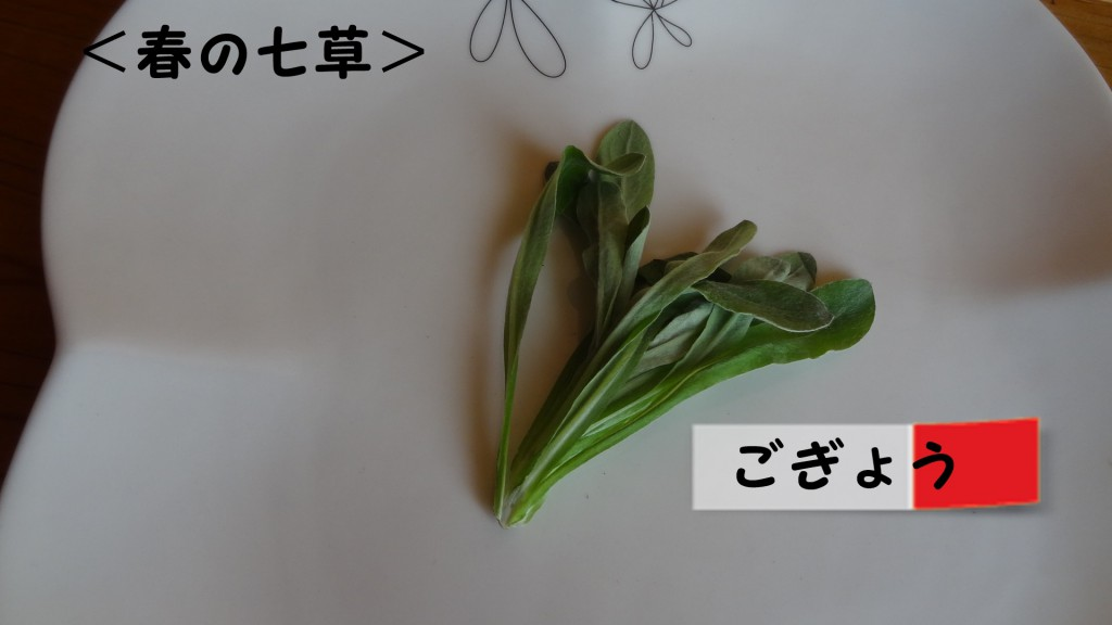 <春の七草>ごぎょう