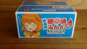 勝浦みかん果汁入りチョコレート(2)