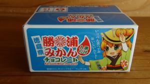 勝浦みかん果汁入りチョコレート(3)