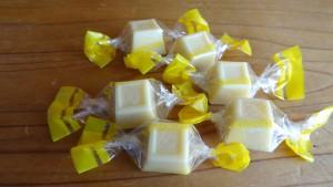 勝浦みかん果汁入りチョコレート(5)