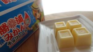 勝浦みかん果汁入りチョコレート(6)