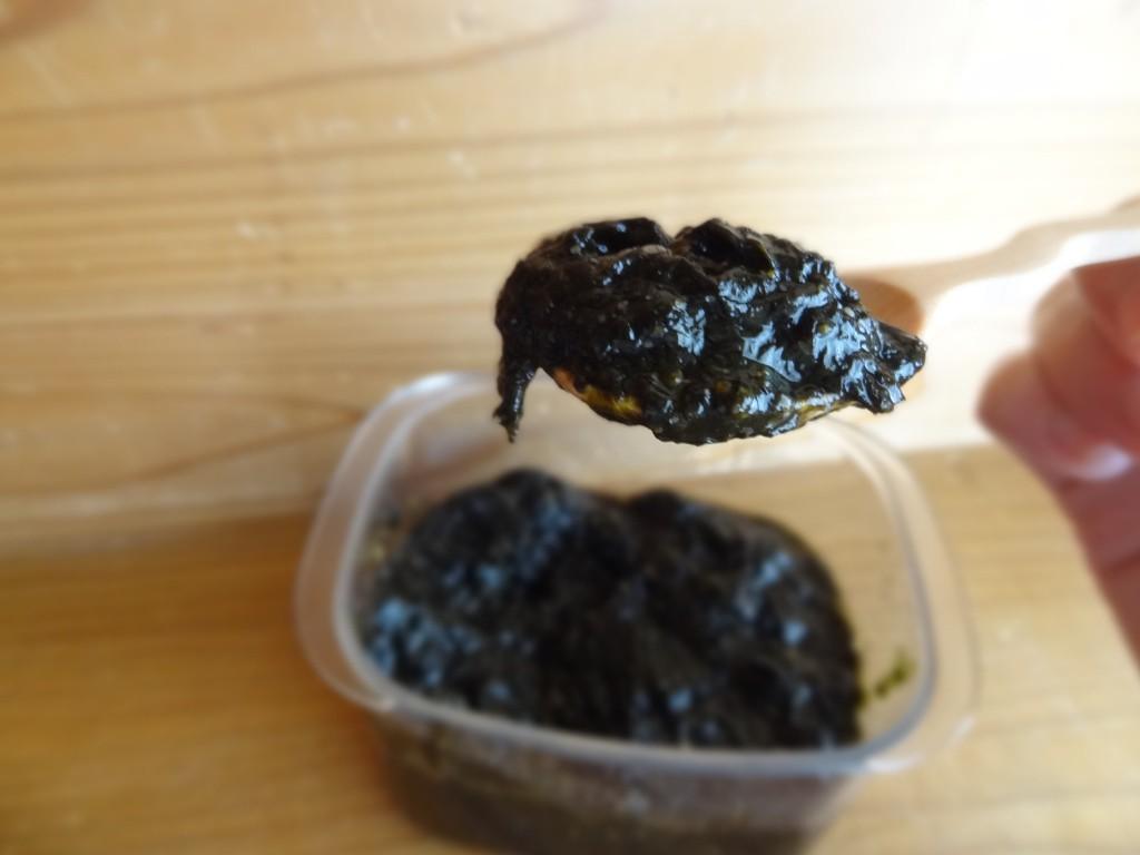 「海苔の佃煮」(3)