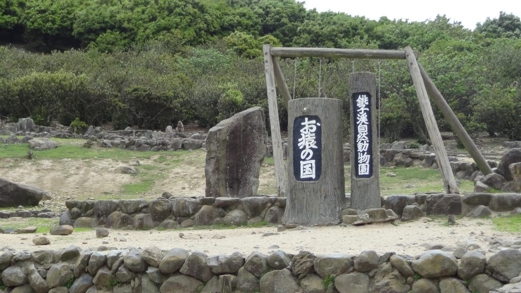 小豆島銚子渓 自然動物園 お猿の国(3)