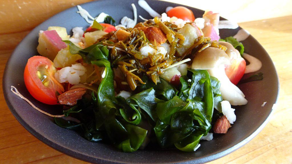 秋の食物繊維たっぷりサラダ&アカモクすだちドレッシング